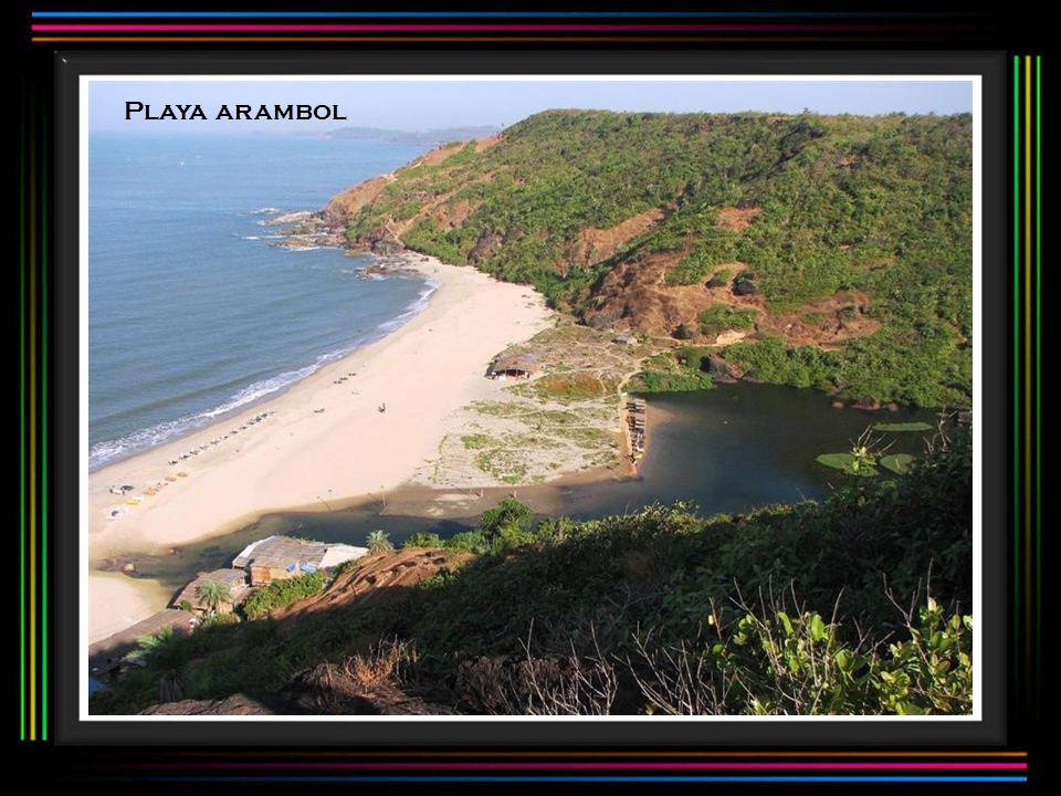 Playa arambol
