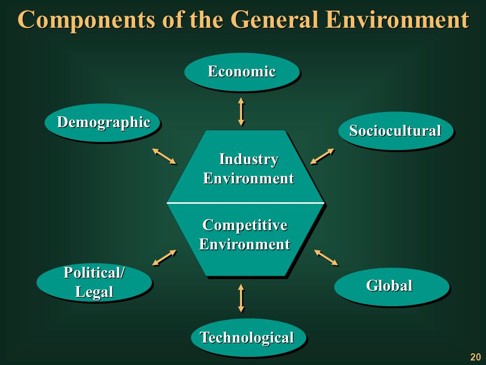 20 Political/ Legal Economic Technological Global Demographic Sociocultural CompetitiveEnvironment Industry Environment Components of the General Envi
