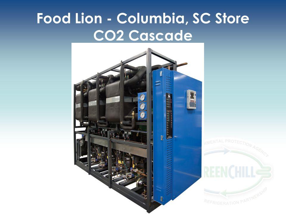 Food Lion - Columbia, SC Store CO2 Cascade