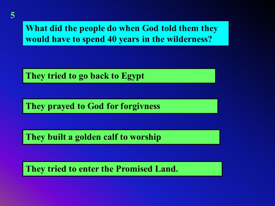 What did the people do when God told them they would have to spend 40 years in the wilderness? They tried to go back to Egypt They built a golden calf