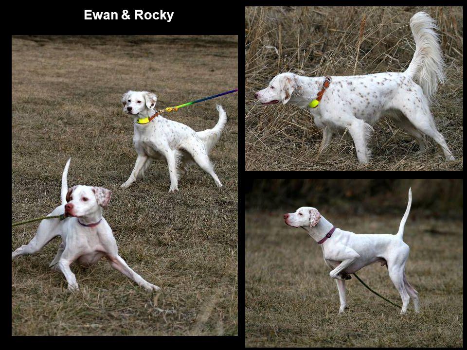 Ewan & Rocky
