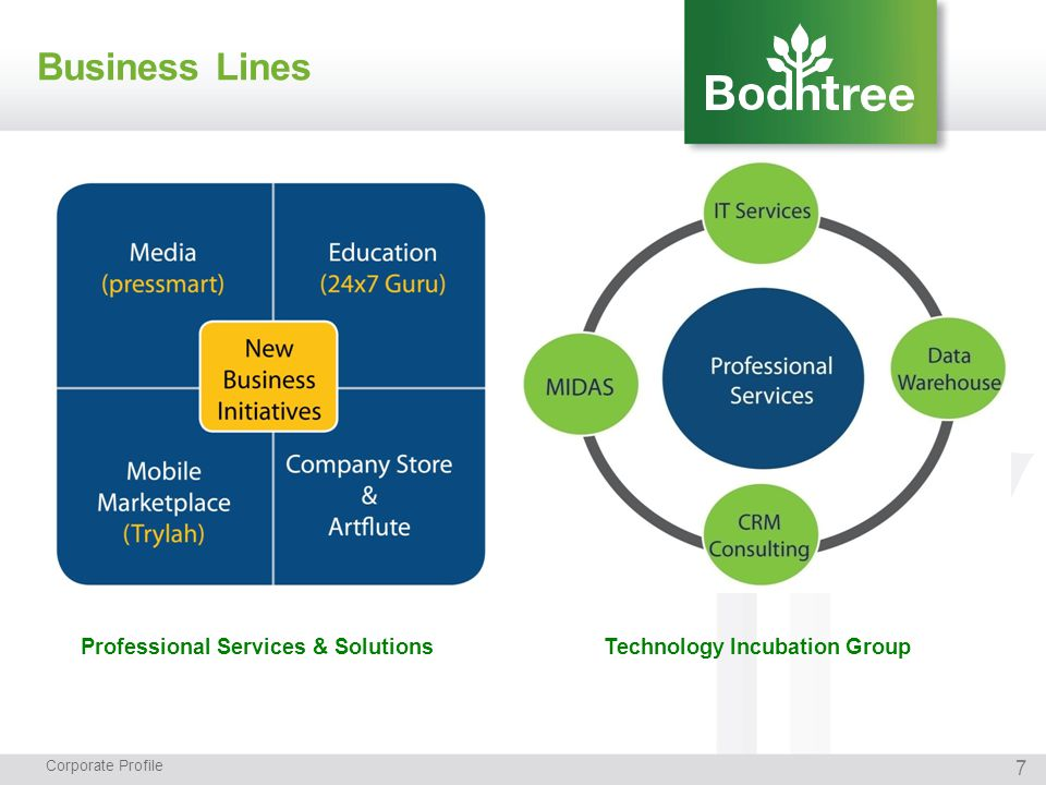 7 Business Lines Corporate Profile Professional Services & SolutionsTechnology Incubation Group