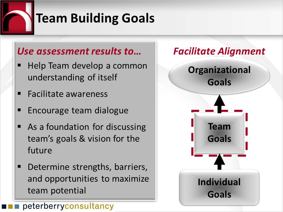 Help Team develop a common understanding of itself Facilitate awareness Encourage team dialogue As a foundation for discussing teams goals & vision fo