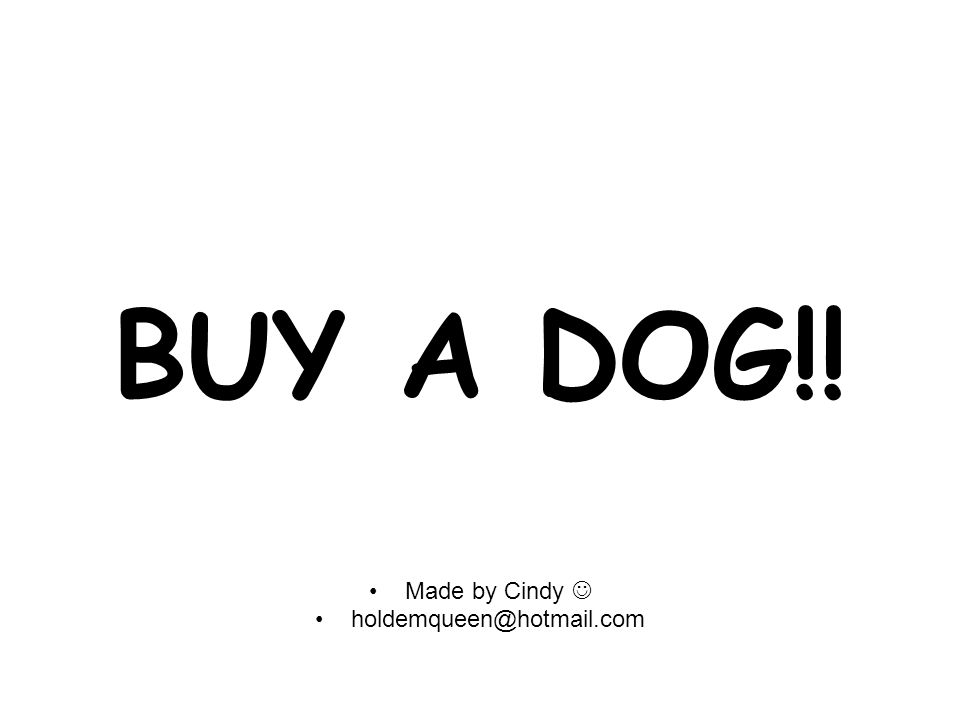 BUY A DOG!! Made by Cindy holdemqueen@hotmail.com