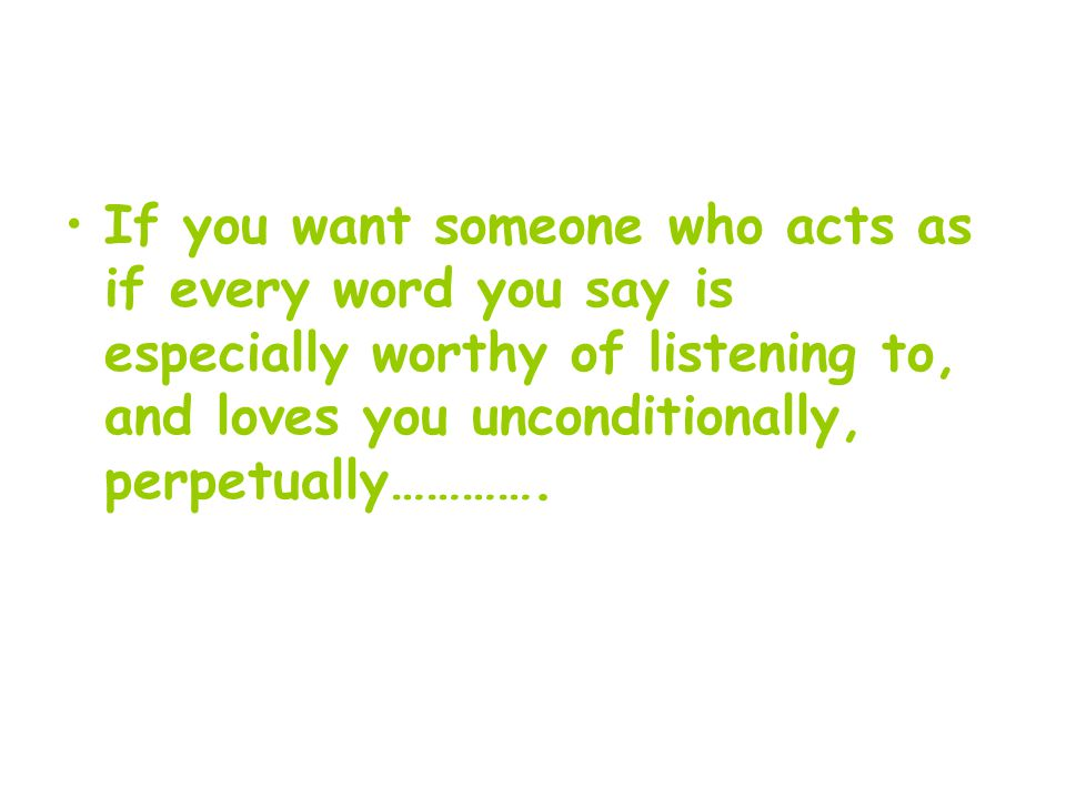 If you want someone who acts as if every word you say is especially worthy of listening to, and loves you unconditionally, perpetually………….