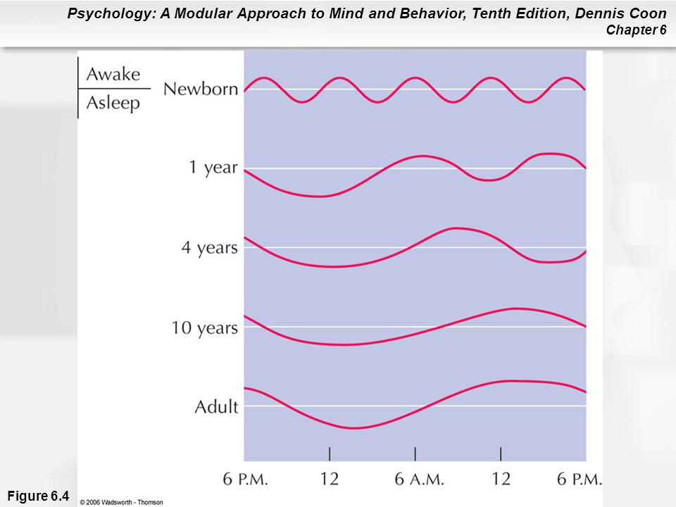 Psychology: A Modular Approach to Mind and Behavior, Tenth Edition, Dennis Coon Chapter 6 Figure 6.4