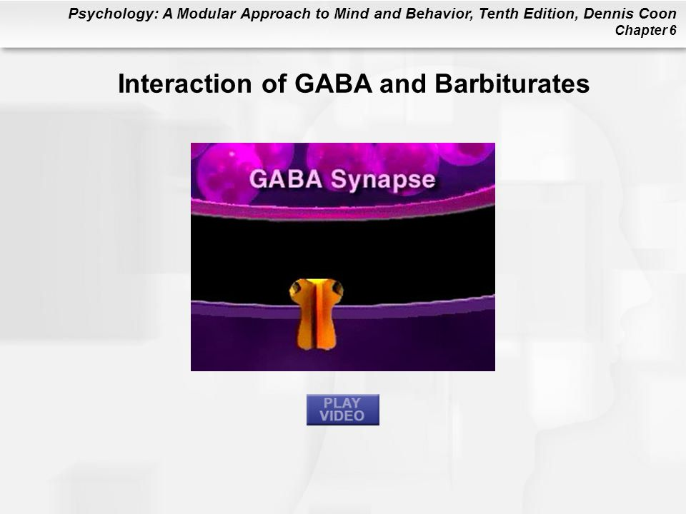 Psychology: A Modular Approach to Mind and Behavior, Tenth Edition, Dennis Coon Chapter 6 Interaction of GABA and Barbiturates