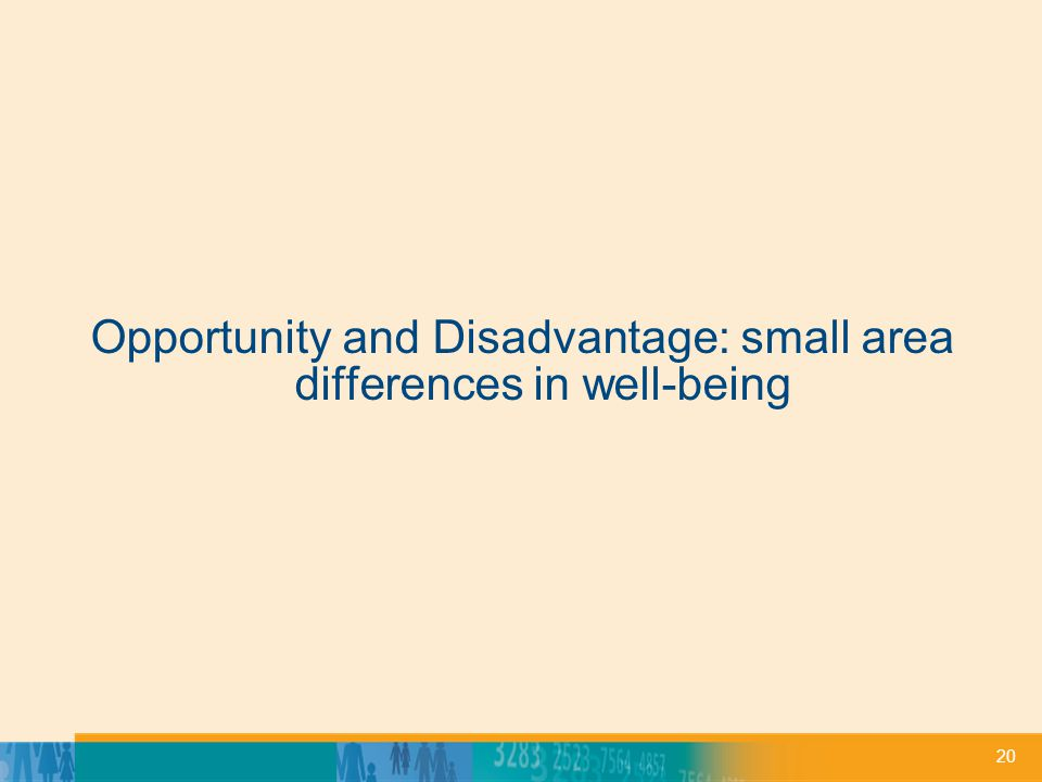 20 Opportunity and Disadvantage: small area differences in well-being