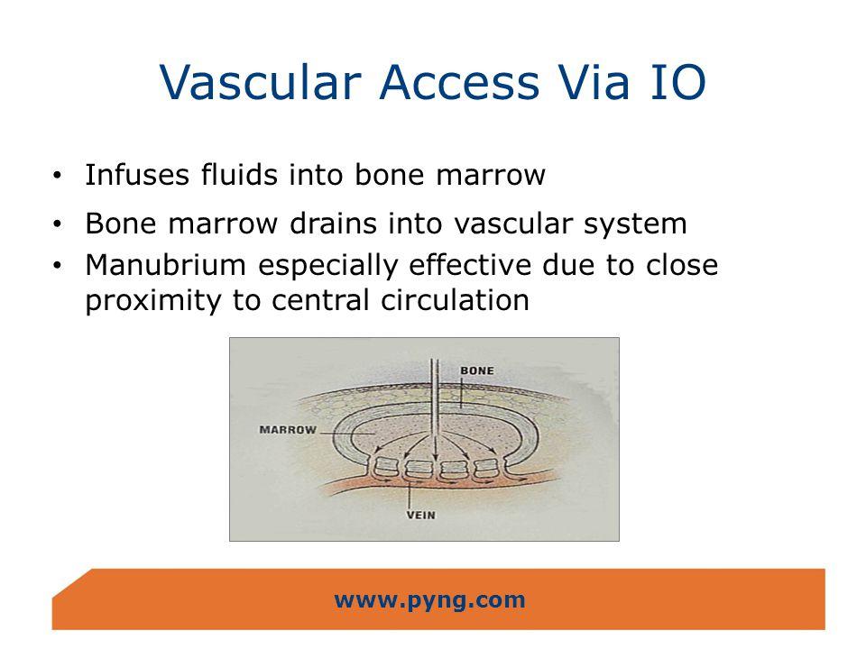 www.pyng.com Vascular Access Via IO Infuses fluids into bone marrow Bone marrow drains into vascular system Manubrium especially effective due to clos