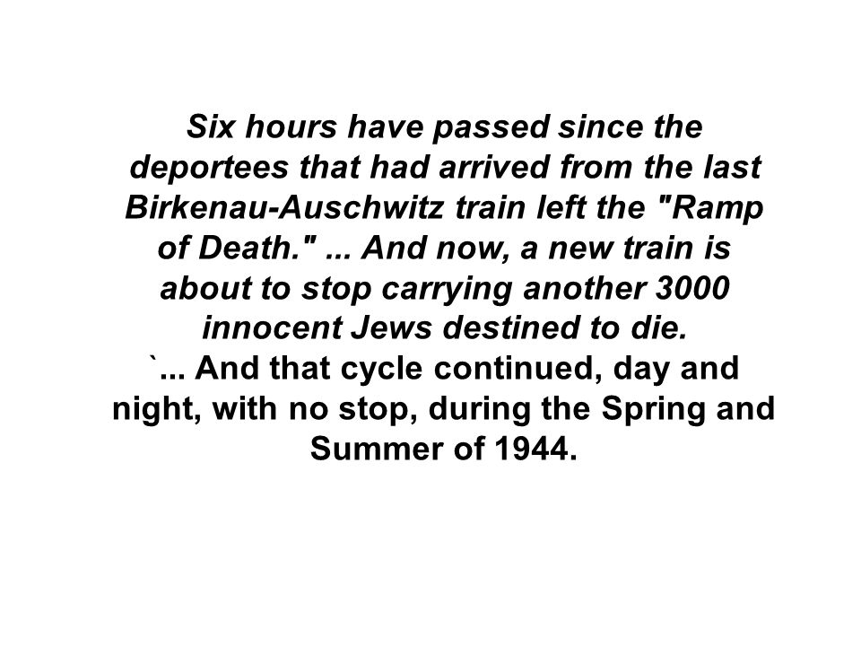 Six hours have passed since the deportees that had arrived from the last Birkenau-Auschwitz train left the