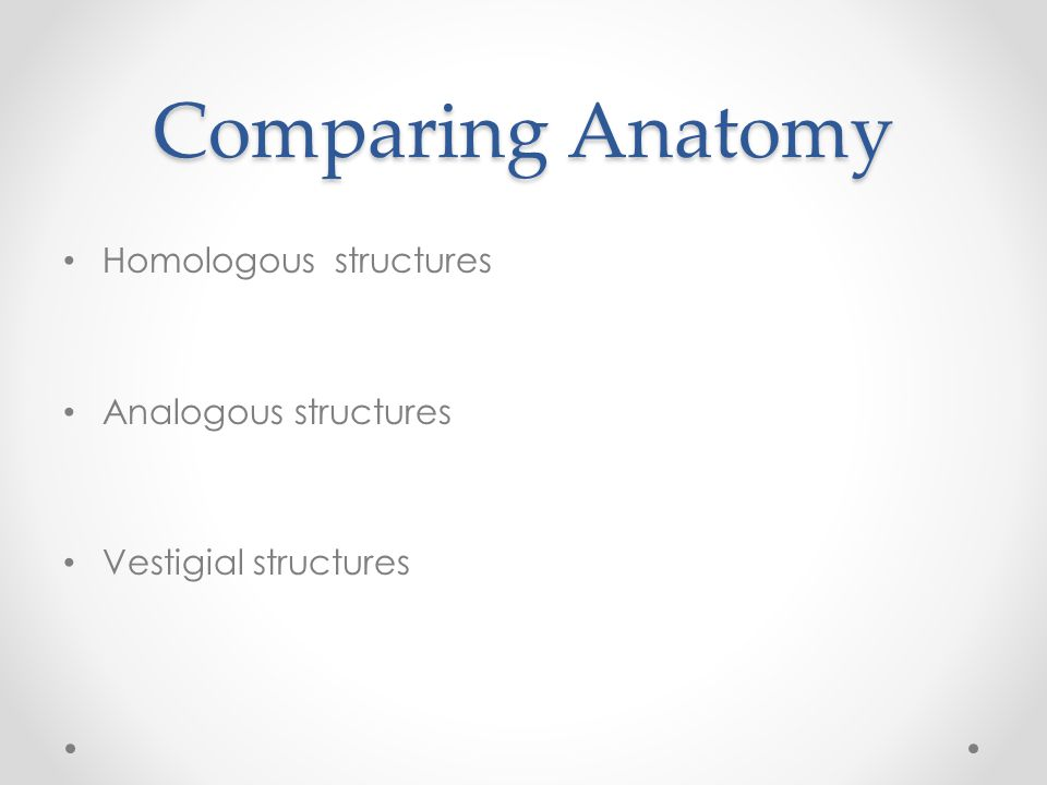 Comparing Anatomy Homologous structures Analogous structures Vestigial structures