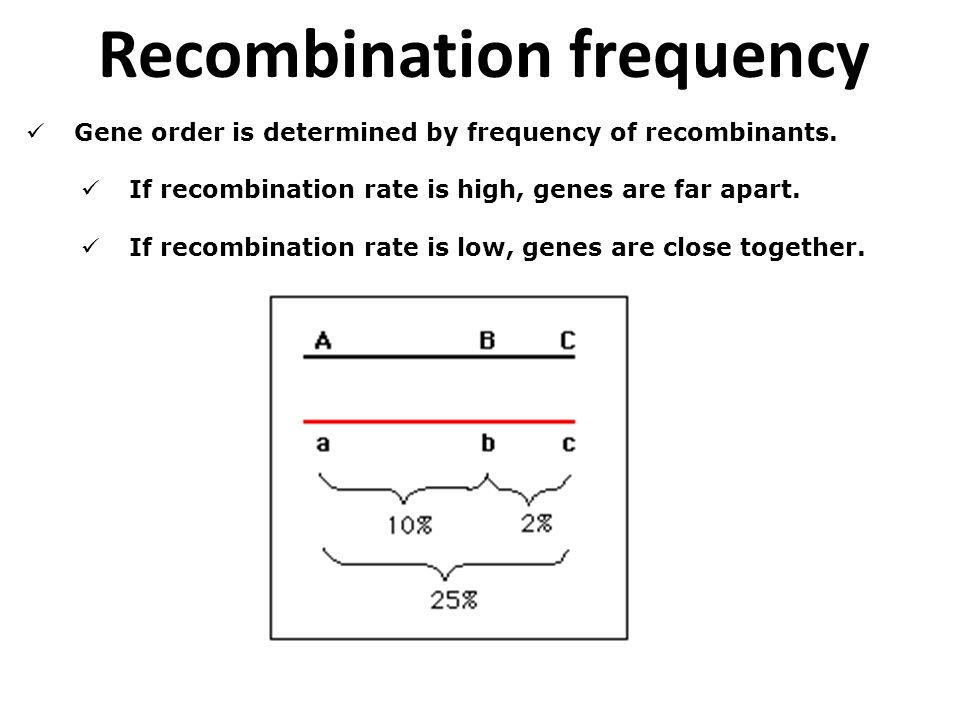 Gene order is determined by frequency of recombinants. If recombination rate is high, genes are far apart. If recombination rate is low, genes are clo