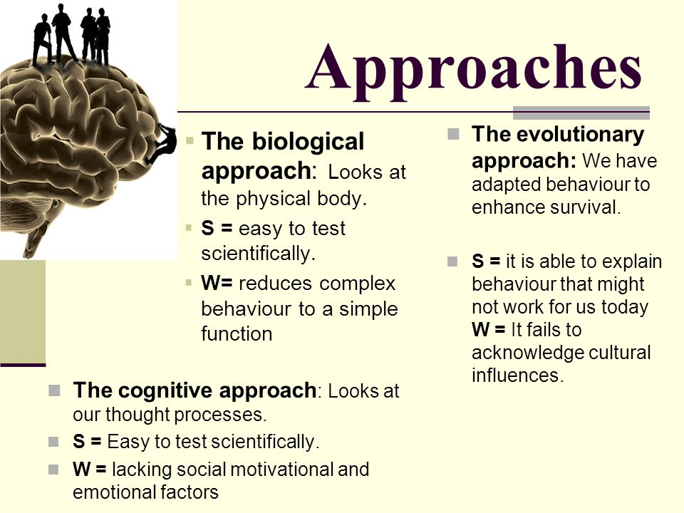 Approaches The biological approach: Looks at the physical body. S = easy to test scientifically. W= reduces complex behaviour to a simple function The