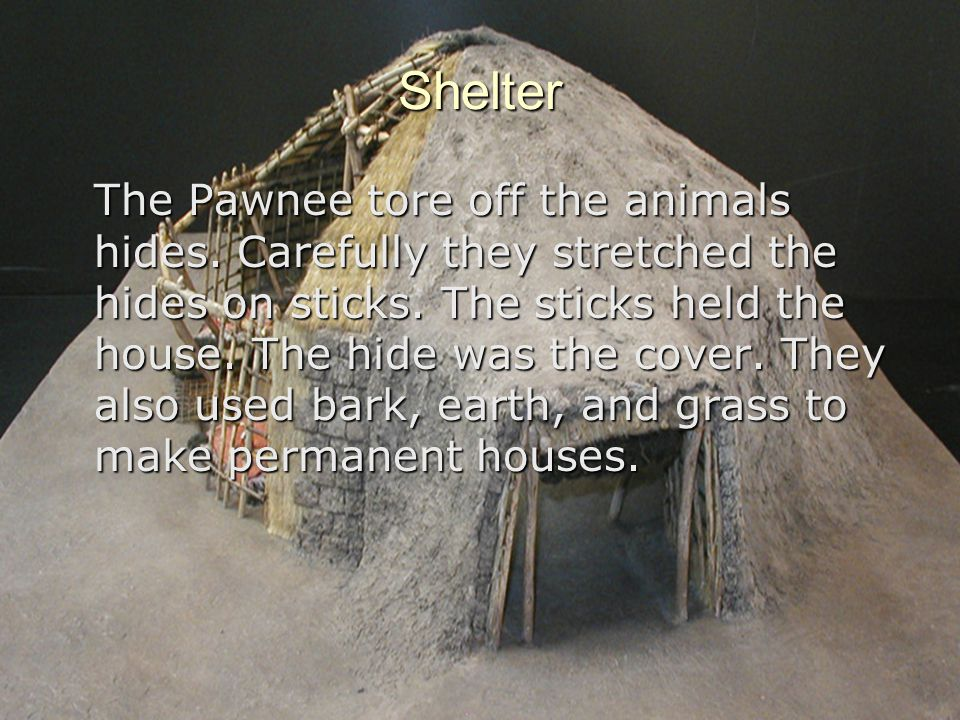 Shelter The Pawnee tore off the animals hides. Carefully they stretched the hides on sticks. The sticks held the house. The hide was the cover. They a
