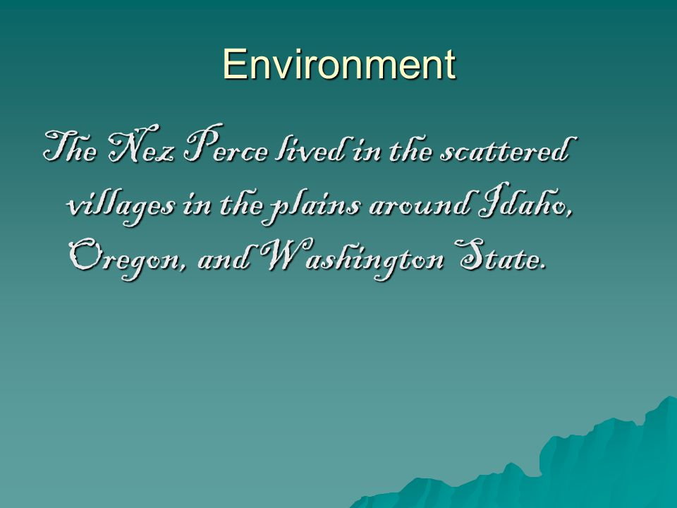 Environment The Nez Perce lived in the scattered villages in the plains around Idaho, Oregon, and Washington State.
