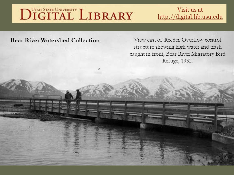 Visit us at http://digital.lib.usu.edu Bear River Watershed Collection View east of Reeder Overflow control structure showing high water and trash cau
