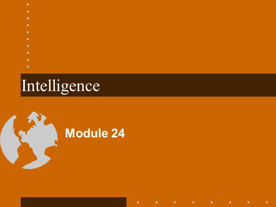 Intelligence Module 24