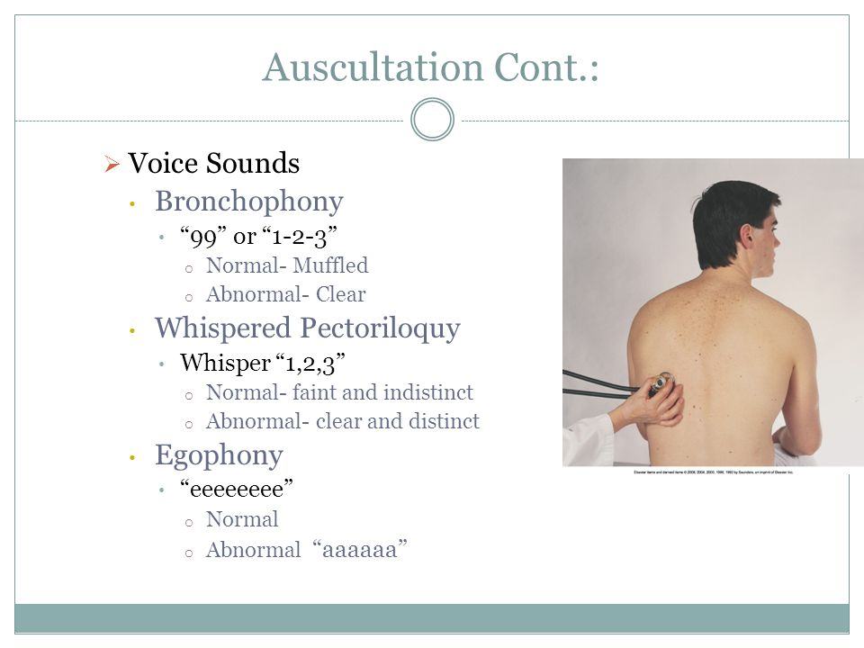 Auscultation Cont.: Voice Sounds Bronchophony 99 or 1-2-3 o Normal- Muffled o Abnormal- Clear Whispered Pectoriloquy Whisper 1,2,3 o Normal- faint and
