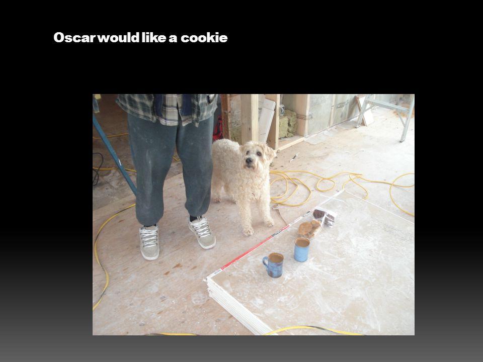 Oscar would like a cookie