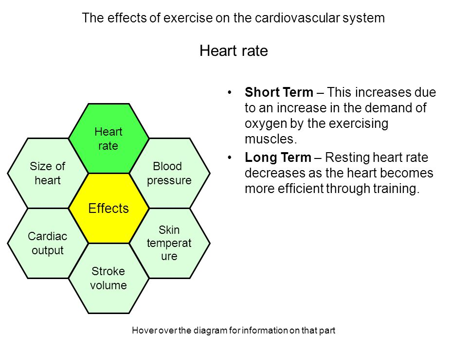 Hover over the diagram for information on that part Skin temperature Short Term – This increases due to an increased demand of oxygen by the exercising muscles.