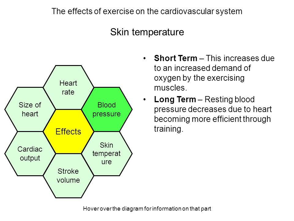 Hover over the diagram for information on that part Skin temperature Short Term – this increases as the heat generated by the muscles is carried in the blood to the surface of the skin to be released.