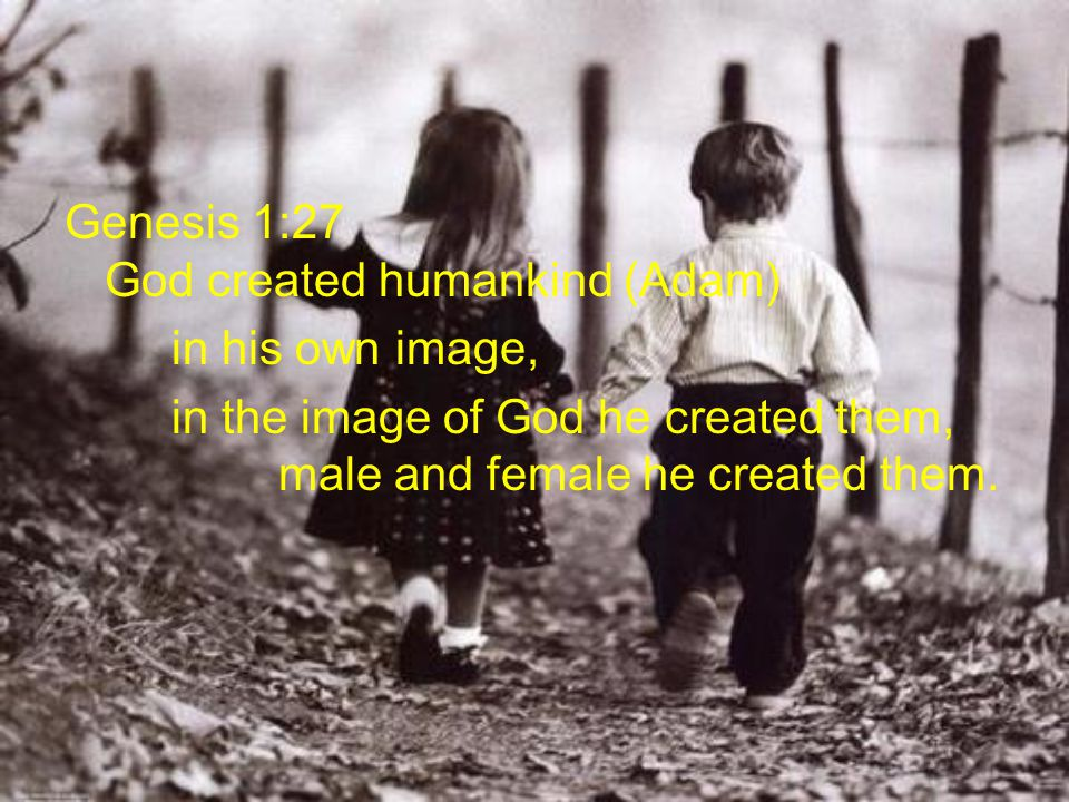 Genesis 1:27 God created humankind (Adam) in his own image, in the image of God he created them, male and female he created them.