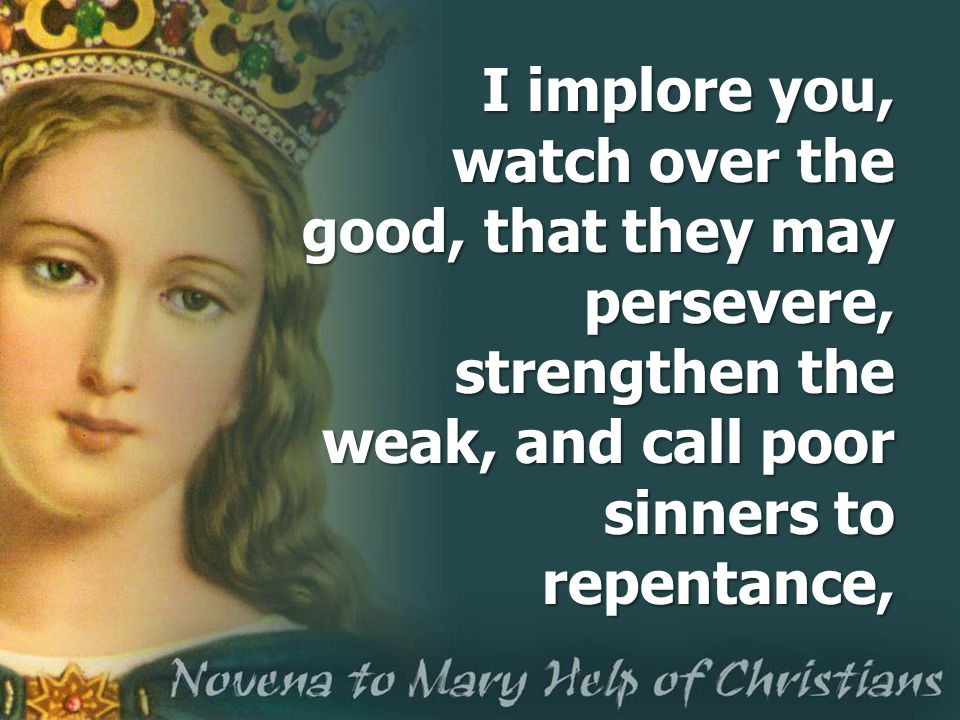 I implore you, watch over the good, that they may persevere, strengthen the weak, and call poor sinners to repentance,