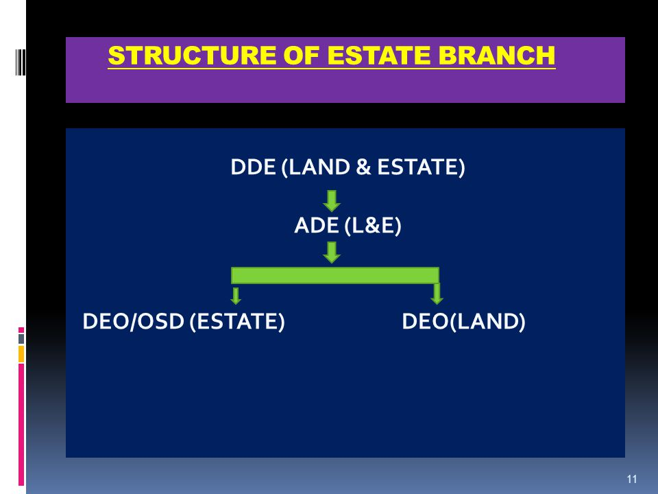 STRUCTURE OF ESTATE BRANCH DDE (LAND & ESTATE) ADE (L&E) DEO/OSD (ESTATE)DEO(LAND) 11