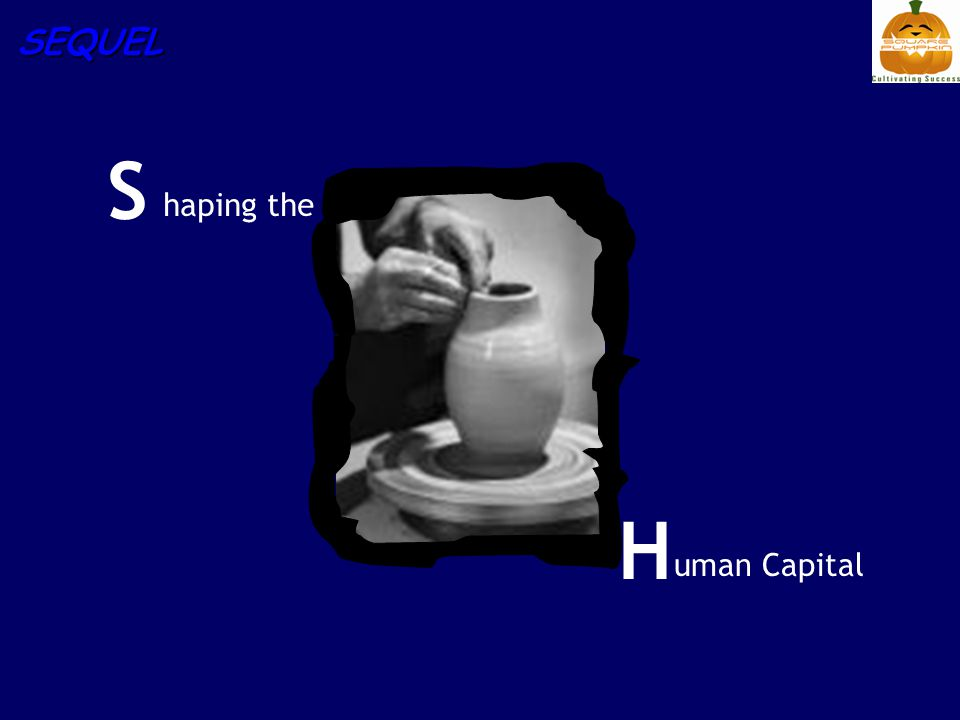 SEQUEL S haping the H uman Capital