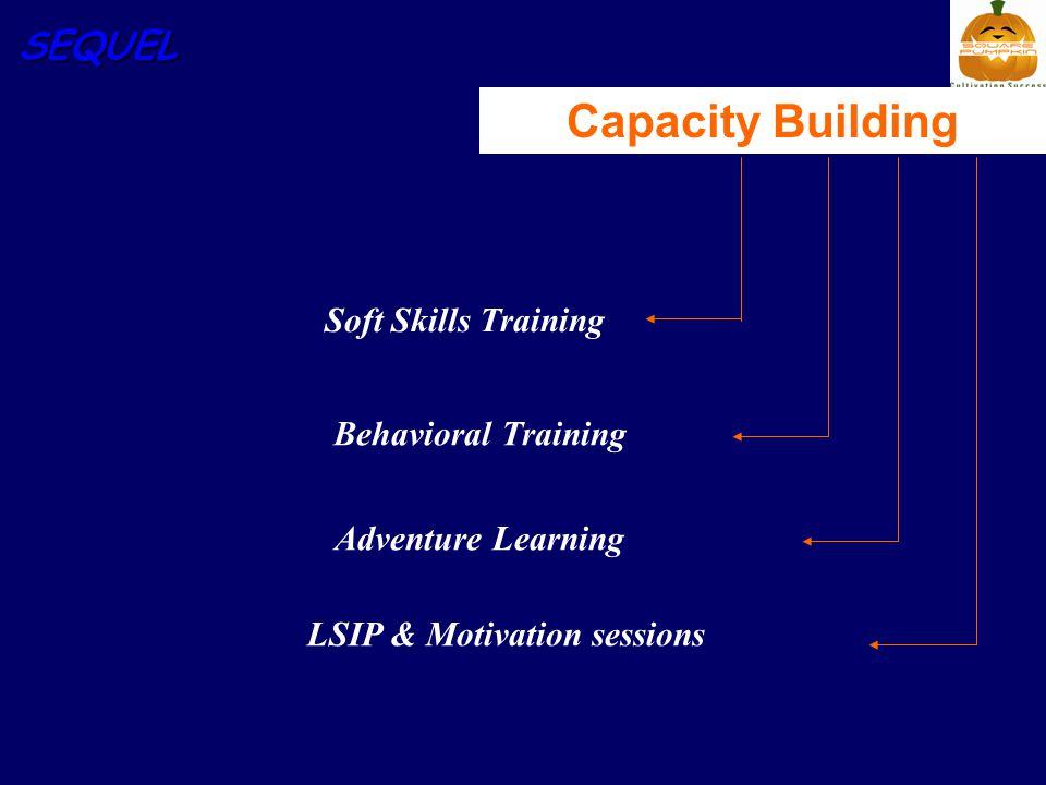 SEQUEL Capacity Building Soft Skills Training Behavioral Training Adventure Learning LSIP & Motivation sessions
