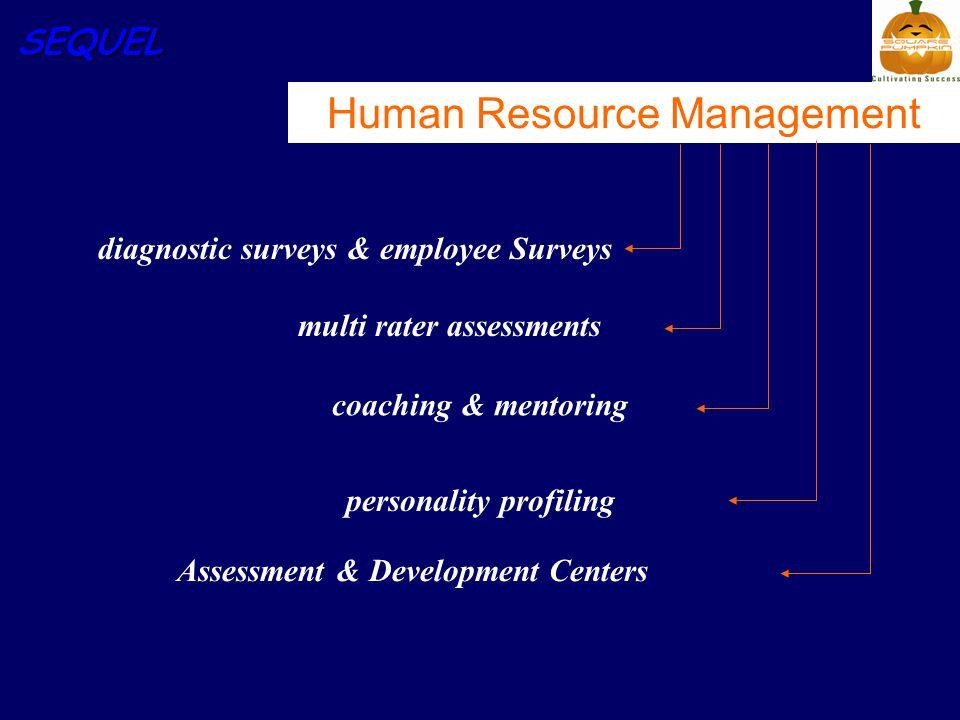 SEQUEL Human Resource Management diagnostic surveys & employee Surveys multi rater assessments coaching & mentoring personality profiling Assessment &