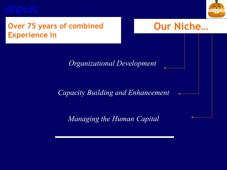 SEQUEL Our Niche… Organizational Development Capacity Building and Enhancement Managing the Human Capital Over 75 years of combined Experience in