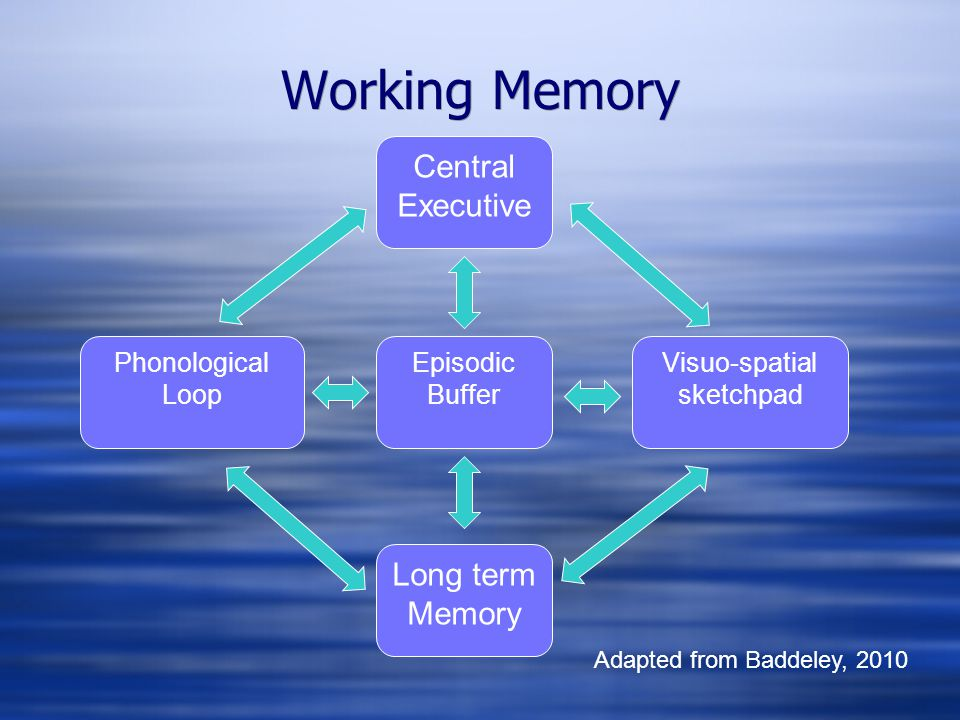 Working Memory Phonological Loop Visuo-spatial sketchpad Episodic Buffer Central Executive Long term Memory Adapted from Baddeley, 2010