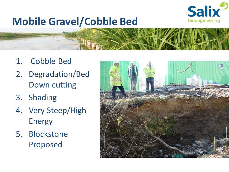 Mobile Gravel/Cobble Bed 1.