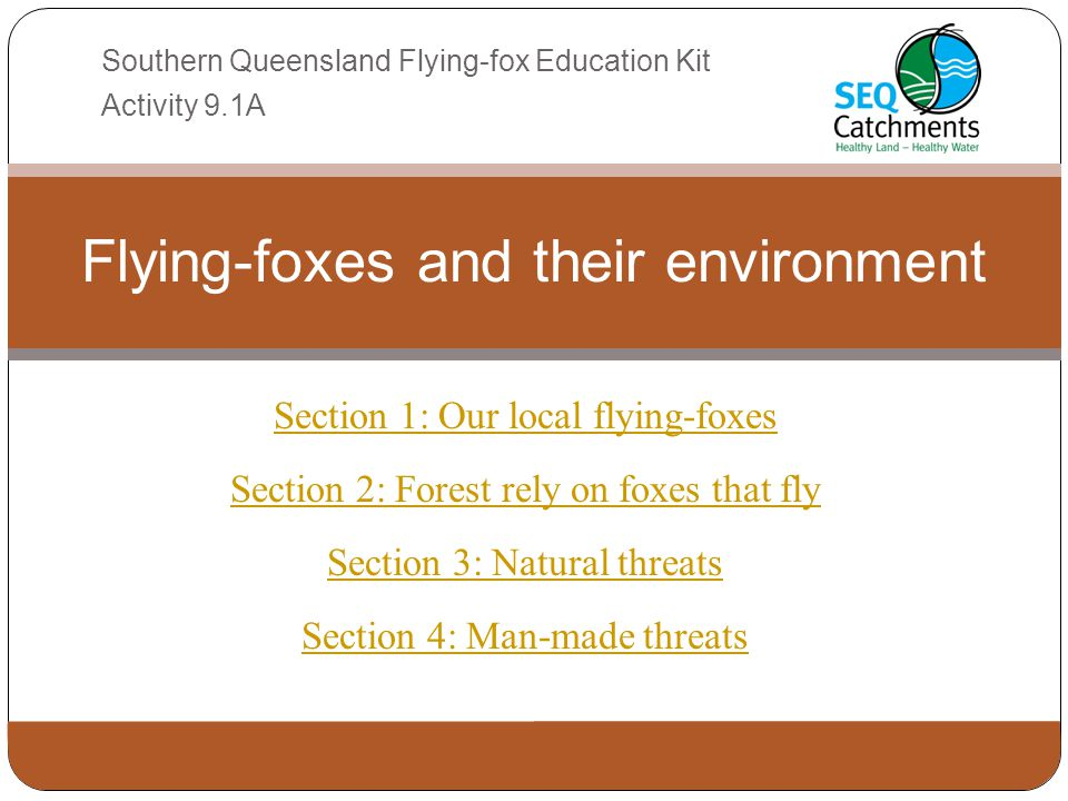 Section 1: Our local flying-foxes Section 2: Forest rely on foxes that fly Section 3: Natural threats Section 4: Man-made threats Flying-foxes and the