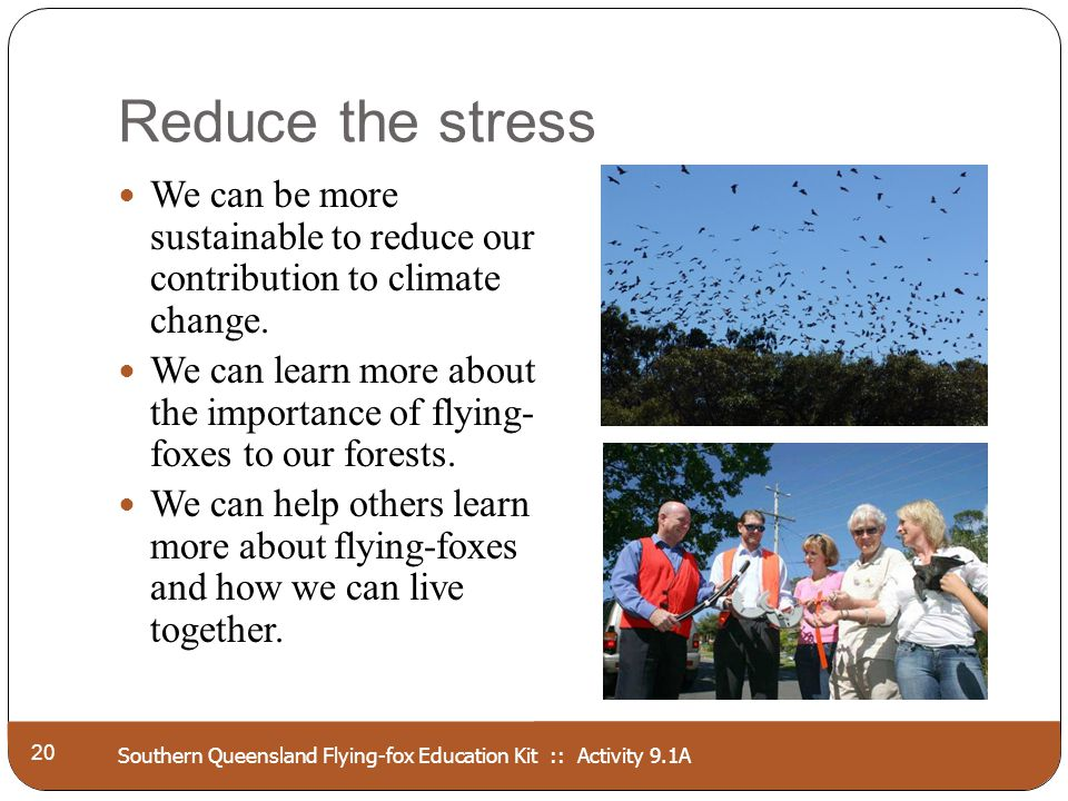 Southern Queensland Flying-fox Education Kit :: Activity 9.1A Reduce the stress 20 We can be more sustainable to reduce our contribution to climate ch