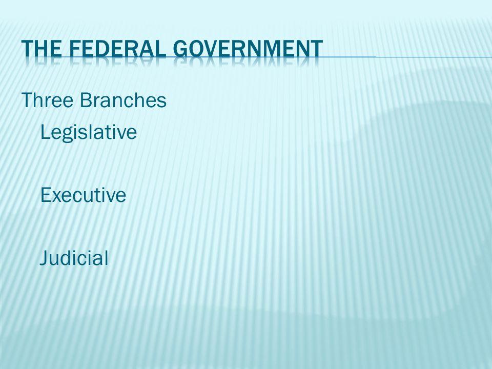 Three Branches Legislative Executive Judicial