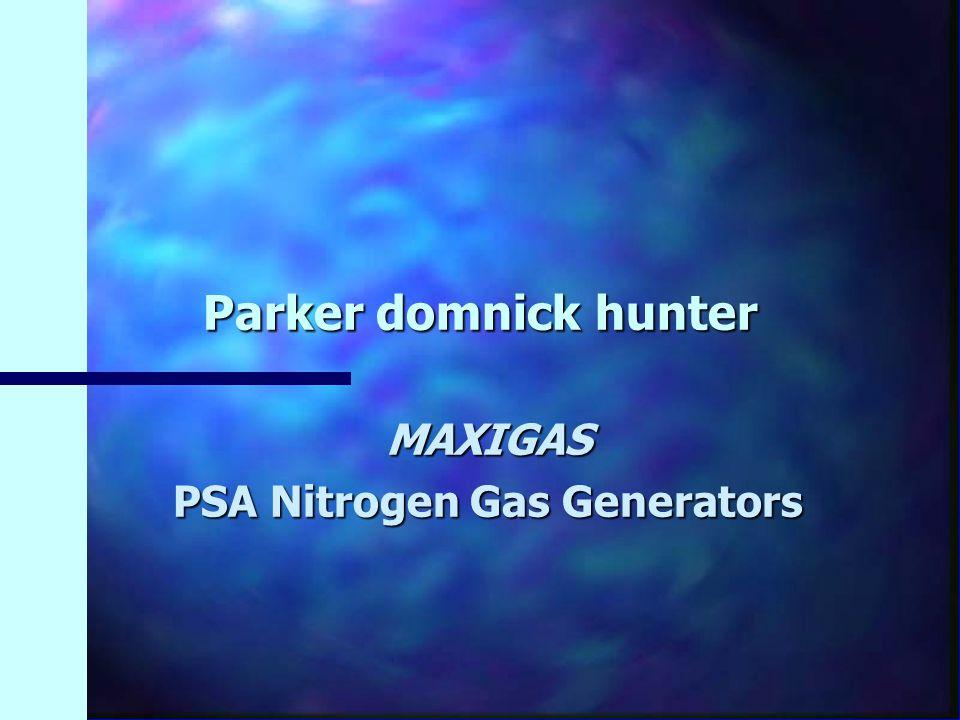 Parker domnick hunter MAXIGAS PSA Nitrogen Gas Generators
