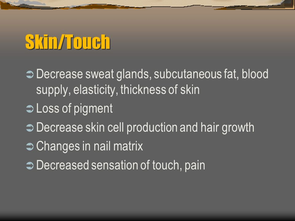Skin/Touch Decrease sweat glands, subcutaneous fat, blood supply, elasticity, thickness of skin Loss of pigment Decrease skin cell production and hair