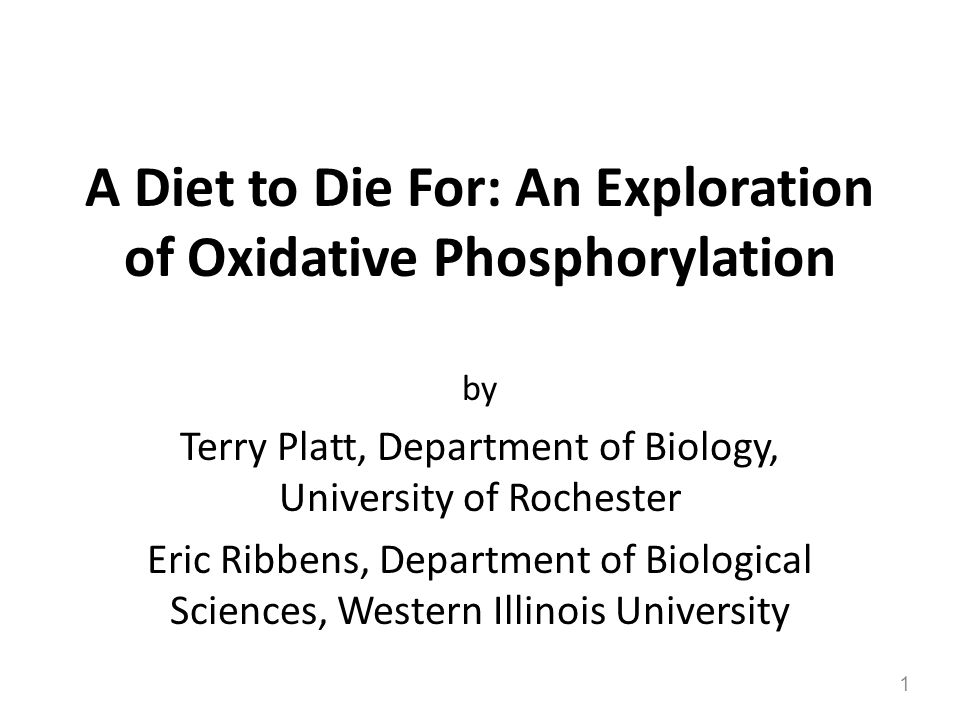 A Diet to Die For: An Exploration of Oxidative Phosphorylation by Terry Platt, Department of Biology, University of Rochester Eric Ribbens, Department