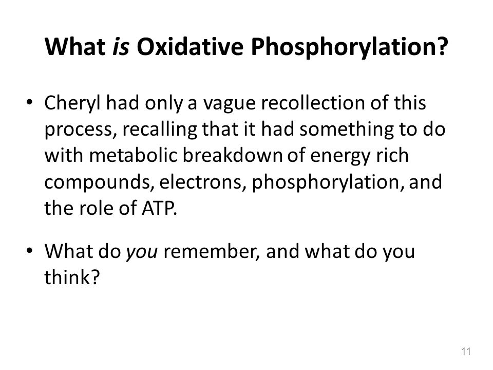 What is Oxidative Phosphorylation? Cheryl had only a vague recollection of this process, recalling that it had something to do with metabolic breakdow