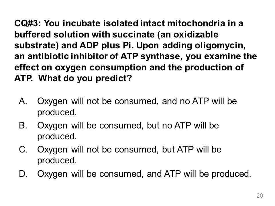 CQ#3: You incubate isolated intact mitochondria in a buffered solution with succinate (an oxidizable substrate) and ADP plus Pi. Upon adding oligomyci