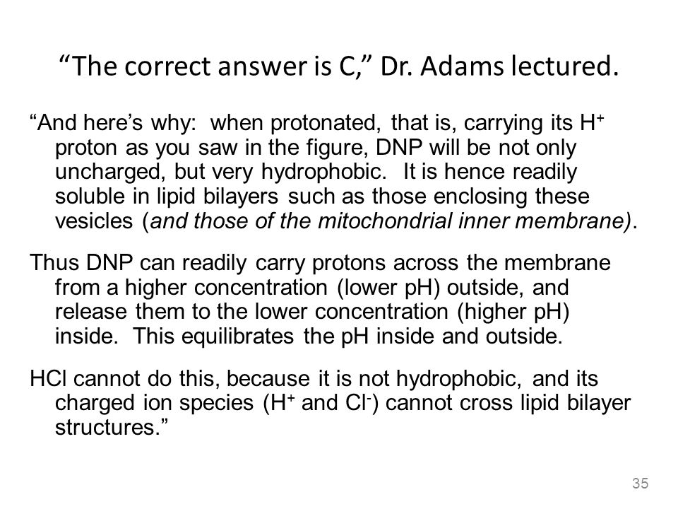 The correct answer is C, Dr. Adams lectured. And heres why: when protonated, that is, carrying its H + proton as you saw in the figure, DNP will be no
