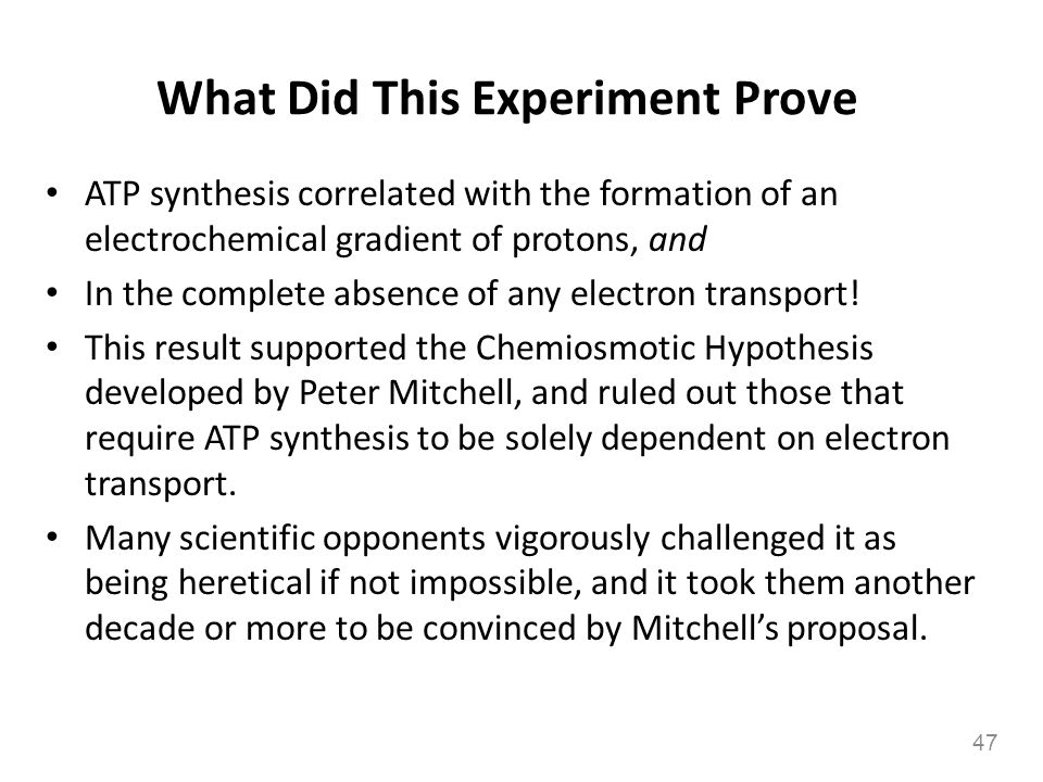 What Did This Experiment Prove ATP synthesis correlated with the formation of an electrochemical gradient of protons, and In the complete absence of a