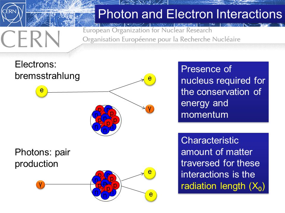 Electrons: bremsstrahlung Photons: pair production p p n n p p n nn p p n p n e e γ e e Characteristic amount of matter traversed for these interactio