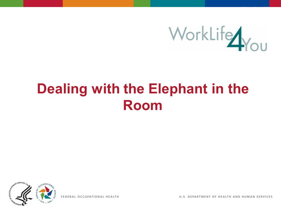 Definition Elephant in the Room: Important and obvious topic which everyone present is aware of but doesnt feel comfortable discussing.