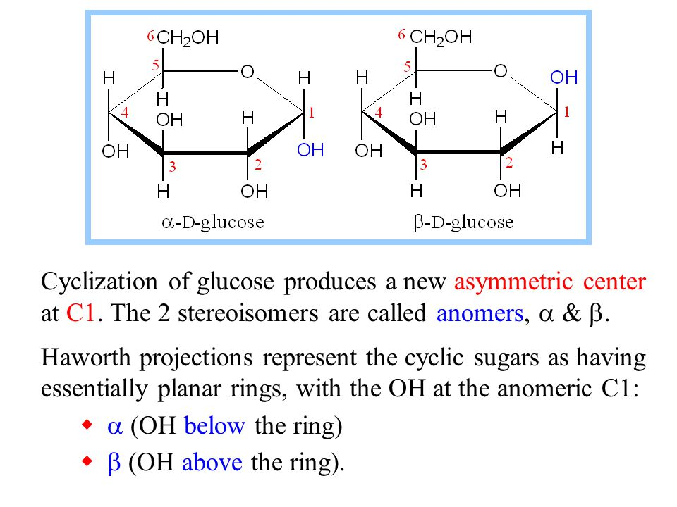Cyclization of glucose produces a new asymmetric center at C1. The 2 stereoisomers are called anomers, &. Haworth projections represent the cyclic sug