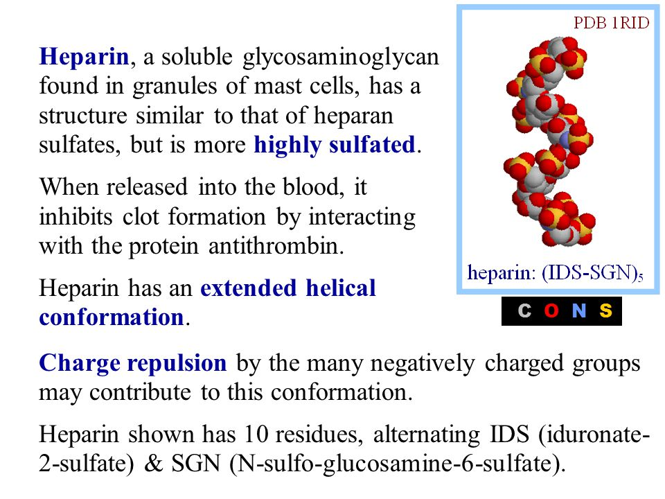 Heparin, a soluble glycosaminoglycan found in granules of mast cells, has a structure similar to that of heparan sulfates, but is more highly sulfated