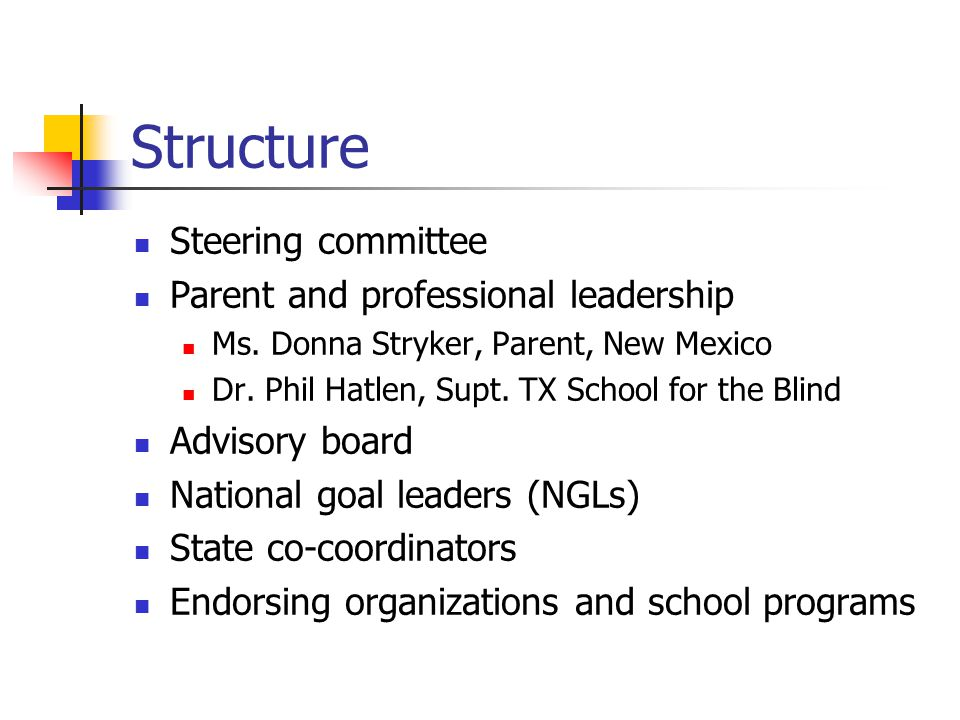 Structure Steering committee Parent and professional leadership Ms.