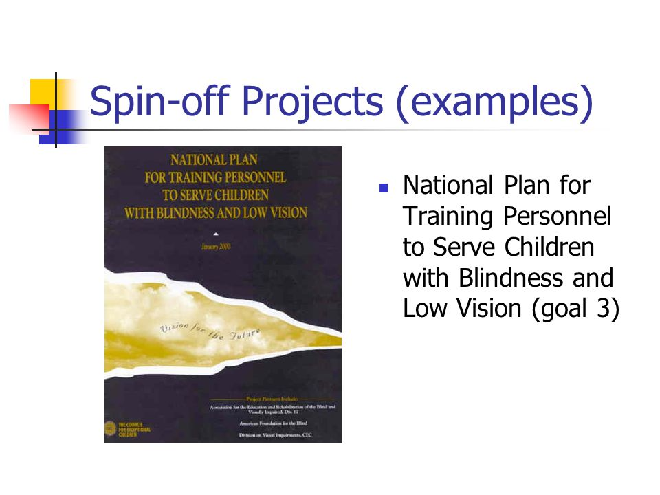 Spin-off Projects (examples) National Plan for Training Personnel to Serve Children with Blindness and Low Vision (goal 3)